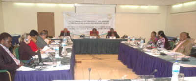 The 15th Extra Ordinary Session of the African Commission on Human and Peoples' Rights  Credit: ACHPR