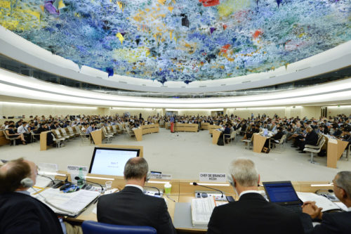 A general view of participants during the 29th Regular Session of the Human Rights Council. 3 July 2015. UN Photo / Jean-Marc FerrŽ